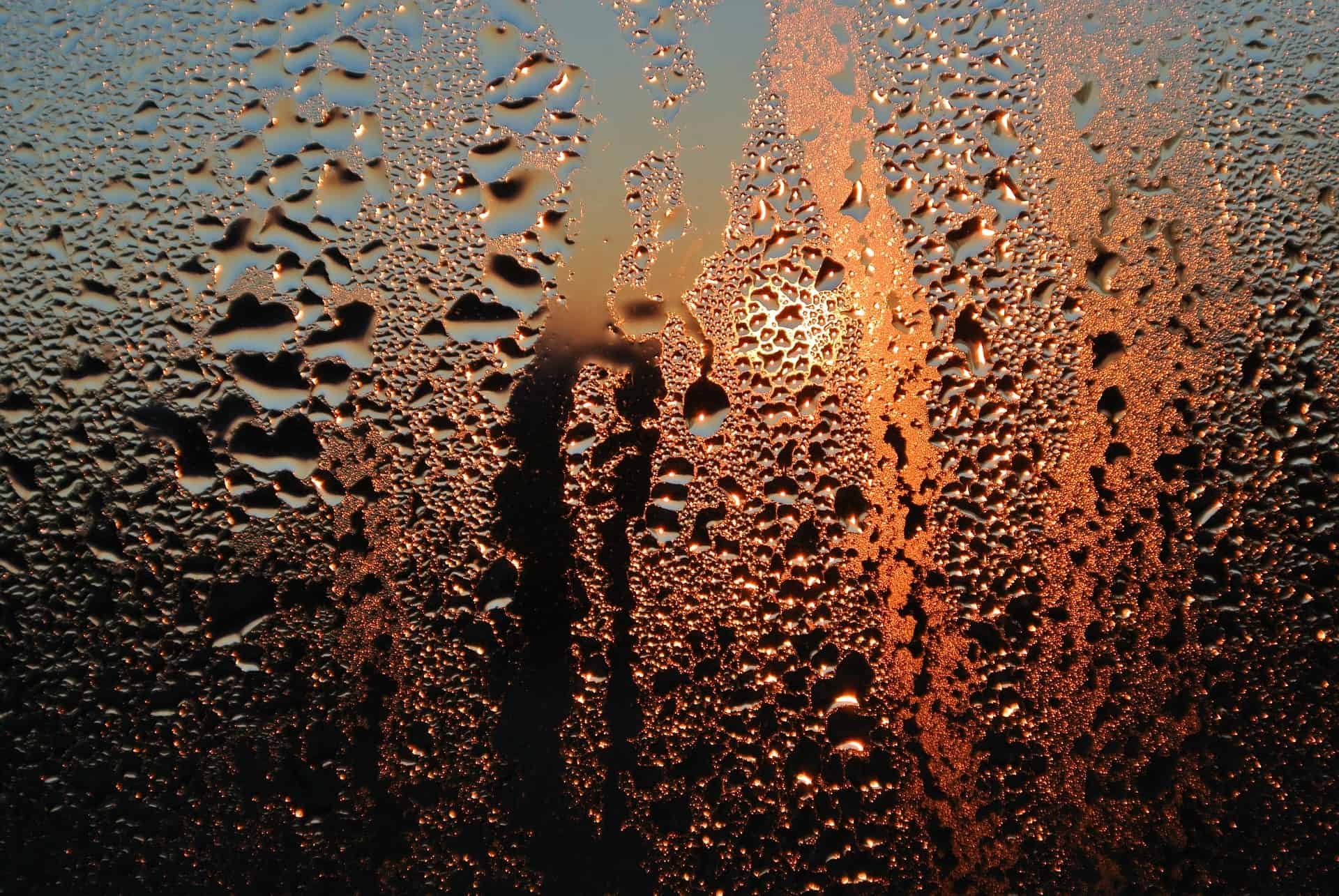 Stop Condensation From Ruining Your Home Merenda Real
